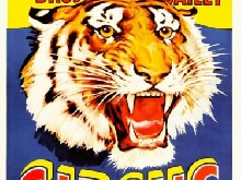 320893 EVENT CIRCUS BARNUM BAILEY RINGLING BROS TIGER PRINT POSTER FR