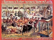 337667 Interior design Barnum Circus animals Zoo PRINT POSTER FR