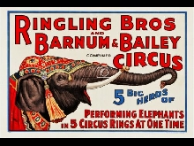 CIRQUE RINGLING BROS BARNUM BAILEY Reps-POSTER 80x120c* d1 AFFICHE VINTAGE