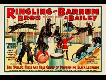 CIRQUE RINGLING BROS BARNUM BAILEY Rcuq-POSTER 80x120c* d1 AFFICHE VINTAGE