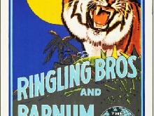 CIRQUE RINGLING BROS BARNUM BAILEY Rgkq-POSTER 80x120c* d1 AFFICHE VINTAGE