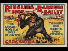 CIRQUE RINGLING BROS BARNUM BAILEY Rsin-POSTER 80x120c* d1 AFFICHE VINTAGE